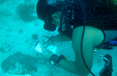 Ron Kirby (a trainee in Nature Seychelles' Reef Rescuers Training program) carrying out a baseline survey of a donor site