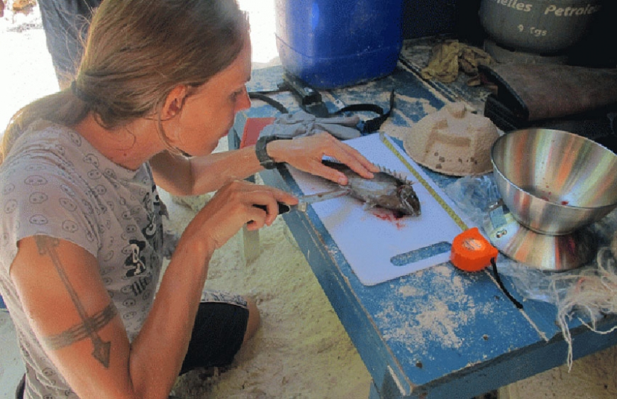 Tagging and Monitoring fish to safeguard Seychelles' resources