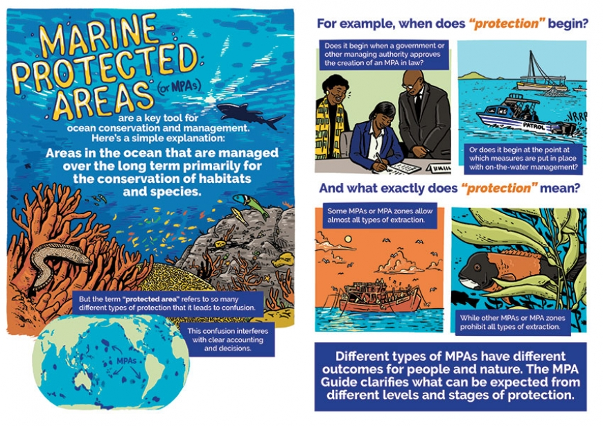 Download The Graphic Guide to Marine Protected Areas